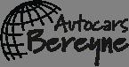 Logo bereyne